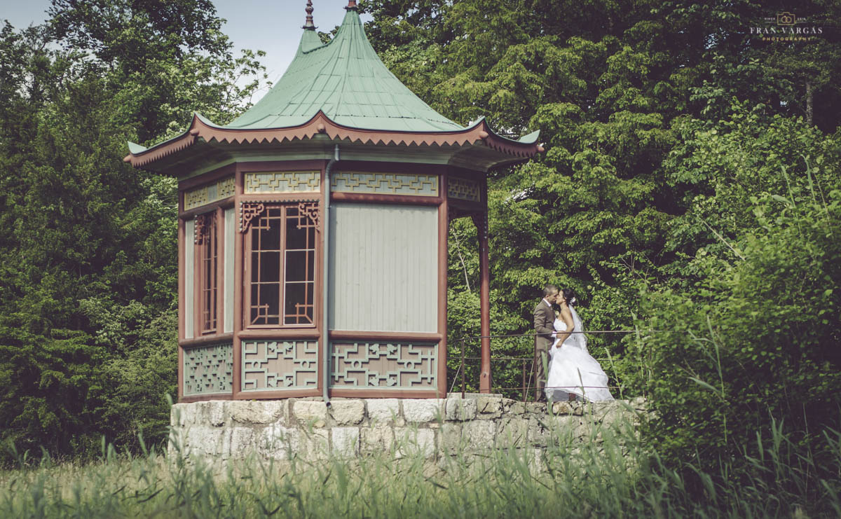 Fotografo de bodas. Boda de Iwan y Yael 2. Fran Vargas Photography-42